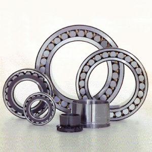 Roulement à rouleaux cylindriques (HH-18)