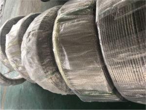 Tubo della bobina di ASTM 310S con l'alta qualità