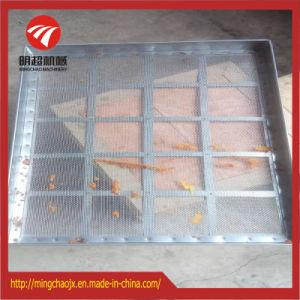 Aço inoxidável China equipamento de secagem de ervas de ar quente