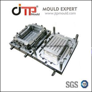 Fabbricazione professionale dello stampaggio ad iniezione di muffa della gabbia di plastica