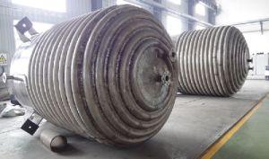 Reattore dell'acciaio inossidabile 316 con il miscelatore
