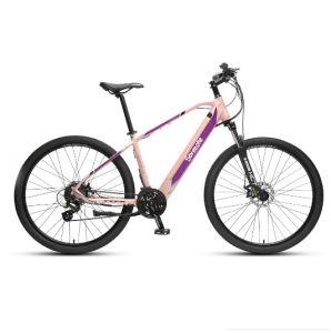 2019 Quente Liga venda de bicicletas eléctricas com bateria ocultos