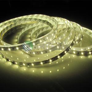 ¡Caliente-Venta! C.C. flexible de la tira 12V/24V de la luz de los 60LEDs/M SMD2835 LED