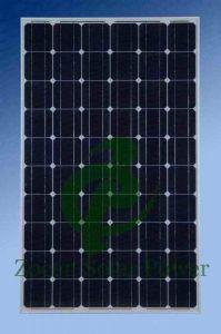 >25 años de vida útil del panel solar - Mono 250W
