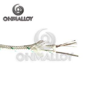 Tipo cavo dell'ANSI 96.1 AWG18 K di termocoppia con isolamento a temperatura elevata