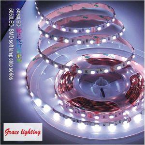 Die triplice 30LEDs Light 10-12lm/LED Flexible LED Strip (G-SMD5050-30-12V-3)