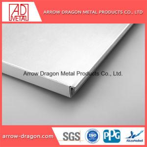 Material decorativo da arquitetura de ninho de alumínio leve