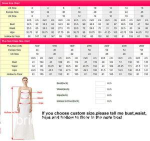 印刷の植物相のプロムの夜会服の黒のピンクのレース党イブニング・ドレスZ1016