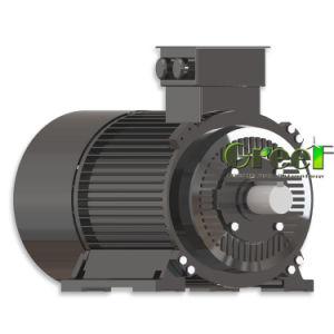 De waterkracht dreef Permanente Magnetische Synchrone Alternator 30kw, 450rpm aan