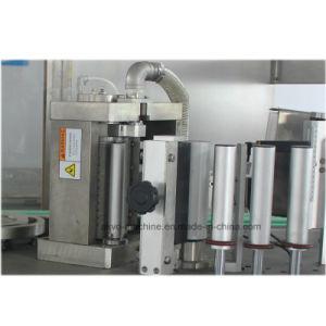 Rzt-04-04p de hete Machine van de Etikettering van de Lijm van de Smelting