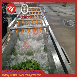 Tipo verdura della bolla di aria e lavatrice della frutta da vendere