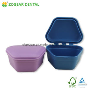 [ت033-6] [زوجر] لون كبير متعدّد أسنانيّة [ستورج] صندوق
