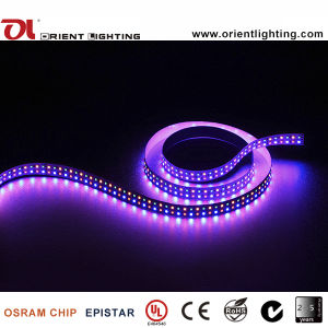 UL de doble hilera de Ce 240/M2835 LED SMD LED RGBA tira flexible de luz