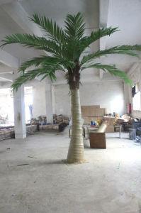 2015 Ventilador Artificial decorativos direto da fábrica Palm plantar árvores (H075)