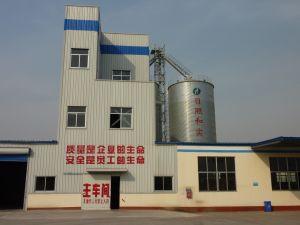A China do Conjunto de Saída Alta do Silo de Aço de Armazenamento de Grãos