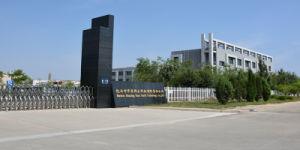 Hoge Zuiverheid 99.99% van de Productie van Huaxing van het Oxyde van het cerium Magere voor Glas Gekleurde Zeldzame aarde 1306-38-3
