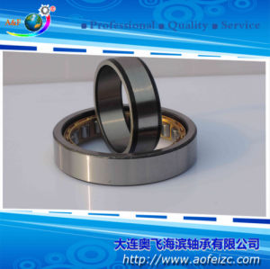 NU1018M Cylindrical Roller Bearings with Brass Cage/Steel Cage
