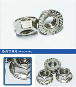 Stainless-Steel 304 m3~les écrous à embase hexagonaux M12