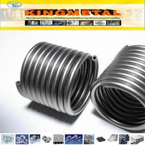 304, 304L, 316, 316L het Roestvrij staal Coil Tube van Heat Exchanger
