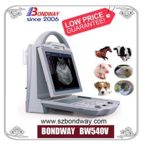 Scanner de ultra-sons de equipamentos hospitalares para os animais