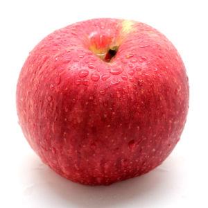 감미로운 Juciy 과일 빨강 Apple