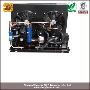 Quarto frio Unidade de condensação do compressor arrefecido a ar