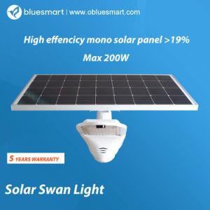 Diseño de módulos LED solares de Jardín de Luz con bolas de luz solar