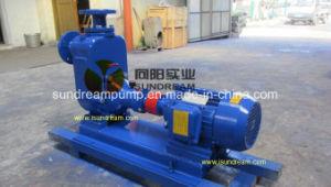 O motor diesel da bomba de esgoto com marcação CE