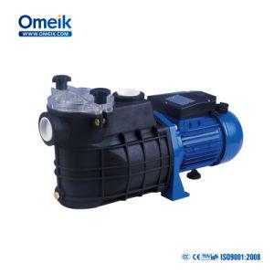 2HP 수영풀 순환 수도 펌프