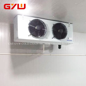 Macchina del dispositivo di raffreddamento di aria della brezza per cella frigorifera
