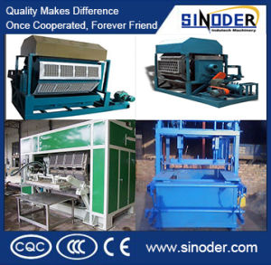 Caixas e bandeja de unidade Bunding Moldagem de fornecedor de linhas de produção de celulose