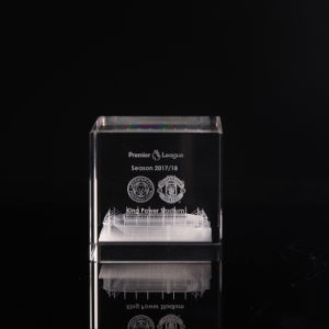 Gravura de Cristal Laser 3D bypass suporta formatos entre plantas para a Loja (KS13583)