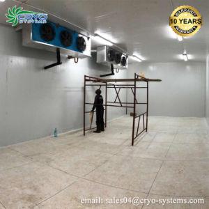 花のクーラー冷却装置部屋の卵の記憶のクーラーの低温貯蔵部屋