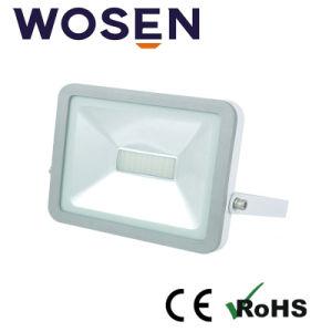 Eclairage par LED SMD 30W de l'iPad pour l'extérieur du projecteur à LED