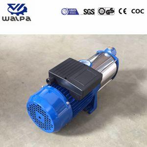 L'eau chaude centrifuge industriel à plusieurs stades de la pompe de circulation
