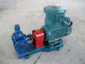 Ycb4 바다 아크 기어 기름 펌프