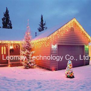 Leomay Weihnachtslicht mit CER RoHS LED heller Zeichenkette