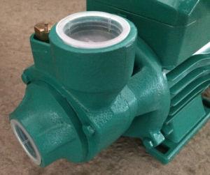 Bomba de agua eléctrica PM50 para limpiar el agua (0,75 CV) Salida de 1pulg.