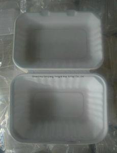 Kasten des Hamburger-9 mit biodegradierbarer Zuckerrohr-Masse