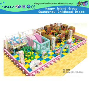 Equipamentos de playground coberto para reprodução suave (HD-08502)