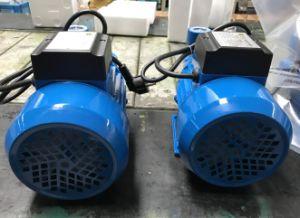 Pkm60 Electric superficie limpia bomba de agua, impulsor de latón (0,37 KW/0.5HP)