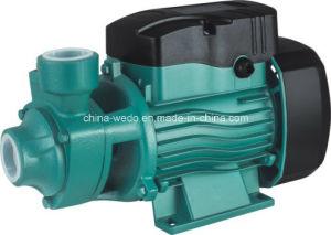 전기 수도 펌프, Qb 수도 펌프, 전기 펌프, 0.75kw/1HP (QB-80)