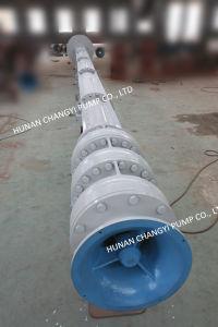 Bomba centrífuga vertical de lodos de flujo mixto de la bomba de agua de mar