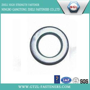 Rondelle ordinaire de la rondelle DIN6916 plate