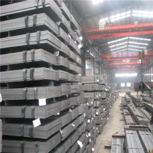 Staaf van de Vlakte van het Staal van de Kwaliteit van de fabriek de Eerste Hete Ondergedompelde Gegalvaniseerde