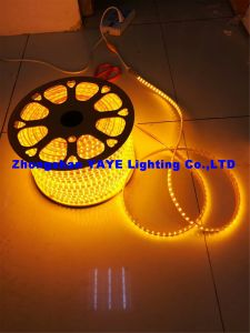 Yaye 18 heißes des Verkaufs-12V/220V SMD2835 RGB wasserdichtes IP68 LED Streifen-Licht-/LED-dekoratives Licht Streifen-des Licht-/SMD LED mit 2 Jahren Garantie-