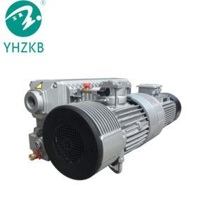 160m3/H de la capacité de la pompe à vide rotative à ailettes Concentrationuum vide