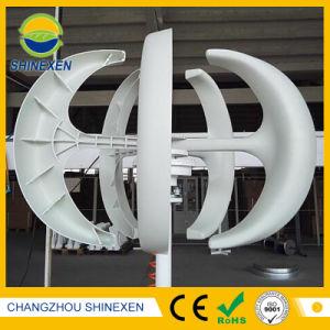Sistema di generatore della turbina del vento di energia rinnovabile 200W 12V/24V