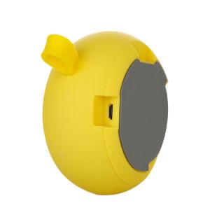 Drahtloser beweglicher MiniBluetooth Lautsprecher mit FM Radio-MP3 Zusatz