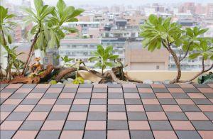 O composto de plástico de madeira / DIY Jardim de Terraço em deck / deck composto